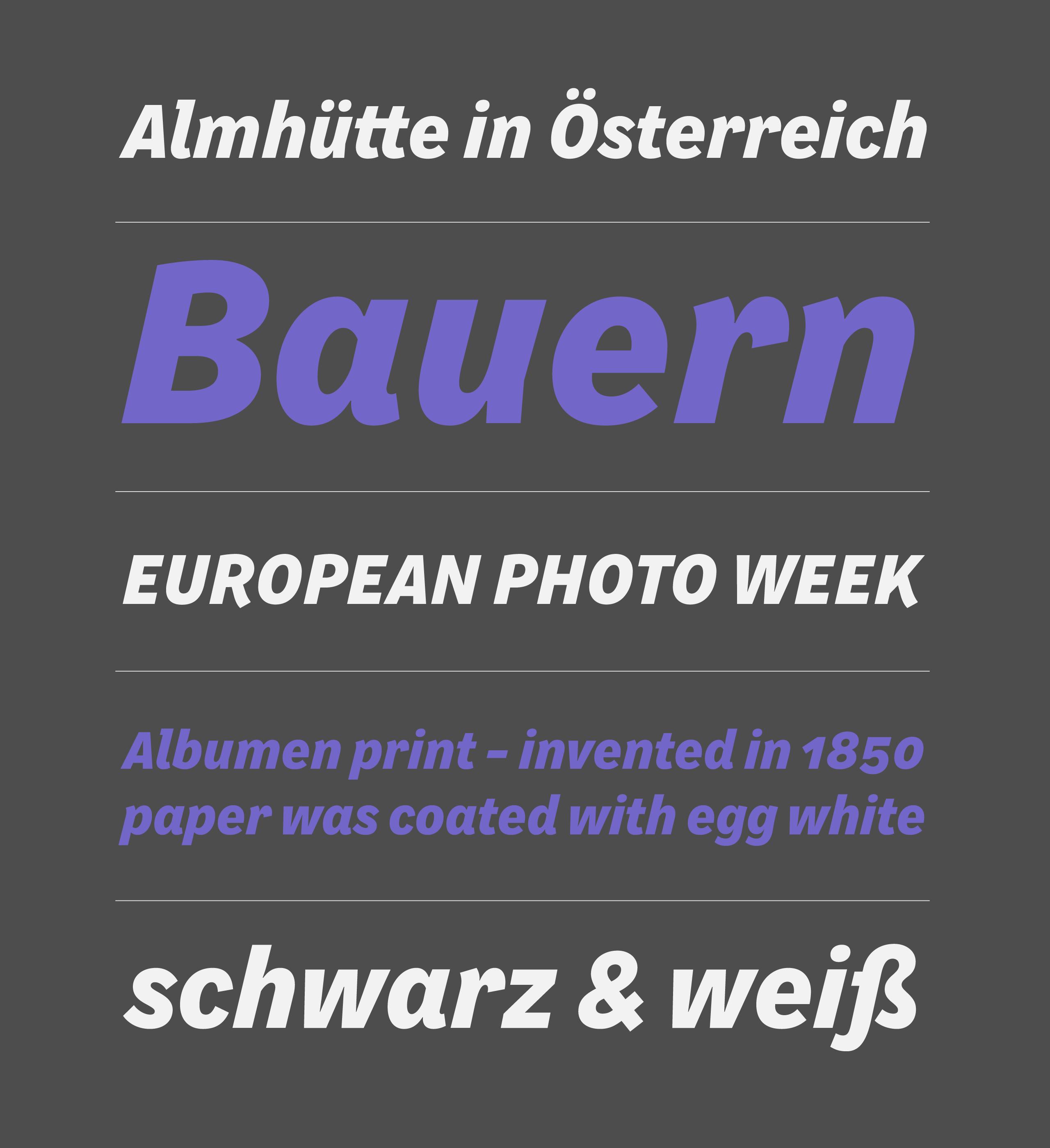 Lammerhuber_specimen_photo